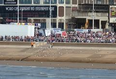 20180811 Blackpool Airshow Seagulls (blackpoolbeach) Tags: blackpool promenade airshow air display seagulls steps crowd tide breeze sandsvenue grounded