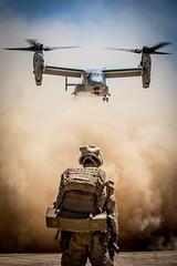 Sandy Skies (United States Marine Corps Official Page) Tags: spmagtfcrcc marines spmagtf–cr–cc centcom marcent 515 3rdbattalion7thmarineregiment 37 camppendleton isis operationinherentresolve oir cjtfoir combinedjointtaskforceoperationinherentresolve iraq iq