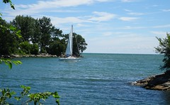A fine day to go sailing  -  Explored (Trinimusic2008 -blessings) Tags: trinimusic2008 judymeikle nature sailboat sailing today summer 2018 lake lakeontario water sky mimicowaterfrontpark toronto to ontario canada sonydschx80 sails explored