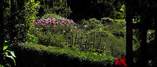 GERMANY , Botanischer Garten am Schloss Hohenheim , 76470/10478