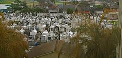 St. Louis #3 ~ From Above (BKHagar *Kim*) Tags: bkhagar cemetery graveyard stlouis3 neworleans nola la louisiana tombs graves aboveground