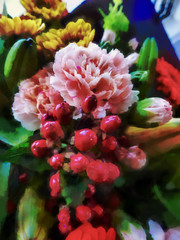 carnation, lily, buds, (Steve Taylor (Photography)) Tags: digitalart colourful newzealand nz southisland canterbury christchurch flower bouquet lily bud leaves