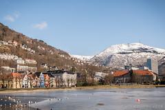 Lille Lungegårdsvannet, Bergen, NO (JnHkstr) Tags: 2018 bergenstad noorwegen norway