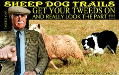 Sheep dogs Trails 2 (The General Was Here !!!) Tags: sheep shepard dog border collie farmer trails tweed jacket cap plaid scottish country farming show mens tweedjacket tweedcap retro vintage nz kiwi newzealand tie houndstooth sheepdogtrails yorkshire manwearingtweedjacket manwearingtweedcap cheesecutter livestock grass outdoor poster sign ap crook countryside oldman man gent suit agricultral dogs old oldschool gentleman fashion animal