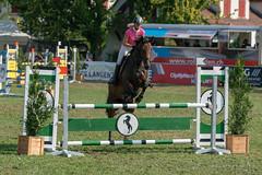 A9908761_s (AndiP66) Tags: springen langenthal 2018 5august2018 august pferd horse schweiz switzerland kantonbern cantonberne concours wettbewerb horsejumping equestrian sports springreiten pferdespringen pferdesport sport sony alpha sonyalpha 99markii 99ii 99m2 a99ii ilca99m2 slta99ii sony70400mm f456 sony70400mmf456gssmii sal70400g2 amount andreaspeters