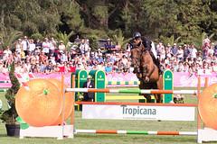 IMG_1712_rt (minions) Tags: dinard 2018 derby jumping cheval cavalier épreuve international
