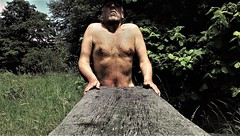 wood (marcostetter) Tags: hairy chest naked nackt park sexy male masculine skin forest wood holz body naturist nude topless shirtless hiking landscape nature