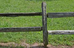 Lean On Me (BKHagar *Kim*) Tags: bkhagar fence wood wooden lichen old rail grass outdoor lawrenceburg tn tennessee hff happyfencefriday