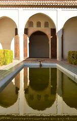 Málaga, in de Alcazaba, Spanje Andalusië 2018 (wally nelemans) Tags: málaga alcazaba vijver pond spanje spain españa andalucia andalusia andalusië 2018
