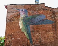 20180805 020 VT Mary Lacy Murals (scottdm) Tags: 2018 art august birthday burlington family lacy martyn summer usa vt vermont wwwmarylacyartcom unitedstates hummingbird