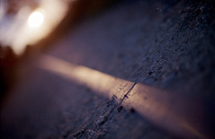 (Ir3nicus) Tags: ausen c41 epsonv800 film negativscan nikonfm2 nikonnikkor50mm112ais analog outdoor analogue negativescan bahngleis railtrack bahnschiene sonne sun geringeschärfentiefe shallowdepthoffield fujicolorsuperiaxtra400