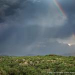 Lightning and Rainbows thumbnail