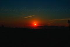 23 (morgan@morgangenser.com) Tags: sunset red orangeyellow blue pretty cloud silhouette sun evening dusk palmtrees bikepath sand beach santamonica pacificpalisades beautiful black dark cement amazing gorgeous inawe ca photobymorgangenser