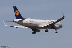 Airbus A320 -214 LUFTHANSA D-AIZX 5741 Francfort mai 2018 (Thibaud.S.) Tags: airbus a320 214 lufthansa daizx 5741 francfort mai 2018 5starhansa sticker