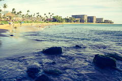 DSC_0145 (Seán Creamer) Tags: maui hawaii kaanapalibeach usa beach aloha blackrockbeach cliffdiving sheraton