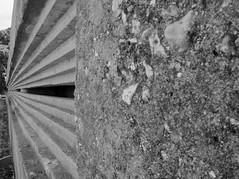 Studland Cliffs (2) (haijee13) Tags: studland cliffs hiking swanage landscapes uk great britain grande bretagne united kingdom royaume uni angleterre south west sud ouest tourisme cows vaches herbe jaune sécheresse canicule heat wave se sea wwii ww2 vestige vestiges randonée randonnée falaises pierres vue bateaux