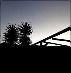 Sunrise silhouette (PaulO Classic. ©) Tags: ssc samsung capetown glencairn photoshop picmonkey silhouette