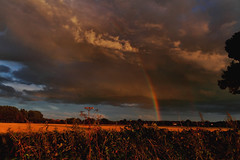 Rainbows end (Explored) (Muckmagnet) Tags: rainbow clouds evening fields rain hedgerow stormysky sthelens merseyside northwestengland