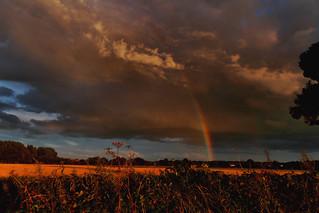 Rainbows end (Explored)