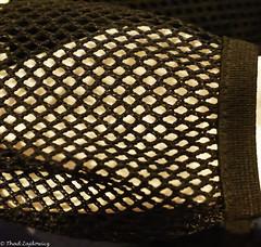 Mesh Pocket -- HMM (Thad Zajdowicz) Tags: zajdowicz mesh macromondays pasadena california usa leica macro backpack home availablelight lightroom