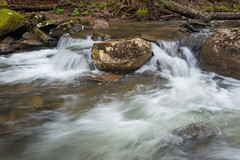 Freshness Along the Creek (Ken Krach Photography) Tags: fallsofthehillscreek westvirginia monongahelanationalforest