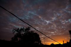Alvorada (Felipe F Barros) Tags: nascer do sol alvorada amanhecer amanhecendo manhã céu itapevi eu amo canon canon60d 60d eos canonbr canonbrasil canonsãopaulo canonitapevi cotidiano documental