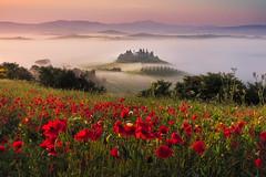 Good Morning Tuscany (LostKang) Tags: tuscany italy sunrise landscape kangpic poppy wild flowers color fog