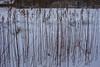 Winter (osedok) Tags: white snowfall snow winter zima snieg