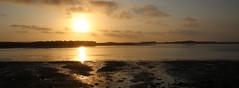Sunset, Budle Bay, Bamburgh (robin denton) Tags: bamburgh sunset budlebay seascape waterscape landscape northumberlandcoast northumberland coast