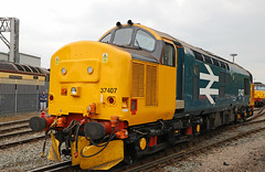 37407 - Crewe Open day (Andrew Edkins) Tags: creweopenday crewe class37 37407 largelogo canon travel trip grestybridge drs englishelectric type3 cheshire england uk geotagged class57 railwayphotography july 2018 summer light tractor