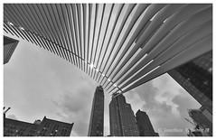 Oculus (Jonathan Zhong 1) Tags: ngc oculus worldtradecentre downtownmanhattan manhattan