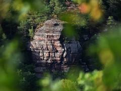 YouLetMeWalkAlone (Jörg Vetter) Tags: jove man jörg vetter rocks buntsandstein forest bokeh colours nature outside valey eifel nideggen light shadow landscape