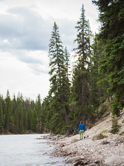 jasper 2017 096 (adamlucienroy) Tags: jasper jaspernationalpark nationalpark forest gh4 panasonic telephoto leica primelens prime 25mm f14 alberta edmonton yeg yegdt canada