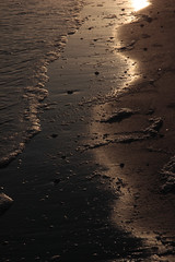 bthethBloFLSanibelElobdm2009-12-02edmIMG_5955.jpg (rachelgreenbelt) Tags: usa northamerica southeast scapes waterscape 710natural sanibel americas florida