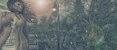 Falling Slow in the Pouring Rain (Novaleigh Freng - Taking Clients!) Tags: sl secondlife slphotography slfashion secondlifefashion secondlifephotography photographysl secondlifephotographer slphotographer avatar bento belleza freya lumae zibska slevents argrace blueberry {bittersweetstrange}poses netherwood photoshop inspired inspiration