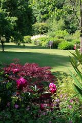 Glendoune House (19 of 30) (stoneleighboy) Tags: southayrshire flowers spring seasons summer typesofgarden walled bench lawn border