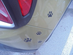 1115 (en-ri) Tags: zampine orme little paws nero sticker adesivo sony sonysti auto car automobile