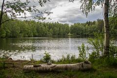 Isolammi (Markus Heinonen Photography) Tags: isolammi haihara kaukajärvi järvi lake tampere maisema landscape luonto nature suomi finland