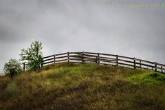 Convergence (HFF) (13skies (broke my wrist)) Tags: top hill fencefriday hilltop up greyskies green farmersfield climb fence happyfencefriday sonya57 hff woodenfence cedarcreekrd