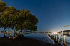 Nightscape over the Bay (Merrillie) Tags: night landscape astrophotography australia tascott foreshore newsouthwales astro nsw brisbanewater coastal bay tree water nightscape nightlights wharf outdoors waterscape wall centralcoast stars nighttime