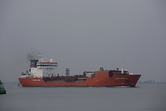 CORAL LOPHELIA (angelo vlassenrood) Tags: ship vessel nederland netherlands photo shoot shot photoshot picture westerschelde boot schip canon angelo walsoorden corallophelia tanker