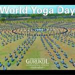 20180621 - World Yoga Day (9)