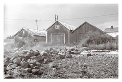 (2015) (phamnes) Tags: blackandwhitefilmphotography 35mm 135film filmphotography slr norway austbø rodinal expiredfilm svemafn64 svema nikonf301 nikon