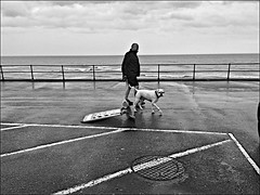 Hornsea wet Monochrome (brianarchie65) Tags: hornsea eastyorkshire eastridingofyorkshire wet windy sea northsea dog monochrome blackandwhite blackandwhitephotos blackandwhitephoto blackandwhitephotography blackwhite123 blackwhiterealms flickrunofficial flickr flickrcentral flickrinternational ukflickr iphonese brianarchie65 ggeotagged holderness clouds people