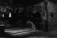 IMG_9713-1ri (kleiner nacktmull) Tags: black blackandwhite bw blanco blancoynegro canon camera deutschland dslr eos europe europa erbe foto flickr germany grey grau jews juden kolle kleinernacktmull kamera lens monochrome nacktmull negro objektiv photo stephankolle stephan schwarz sw schwarzweiss schwarzweis unesco weis white weiss welterbe welt worldheritagesite worldheritage world lager camp konzentrationslager concentrationcamp auschwitz polska poland polen birkenau 5dmkii 5dmarkii 5d 24105mm 2018 worldwarii war krieg 2weltkrieg nazis ss roma zigeuner vernichtungslager vernichtung krematorium sinti cramatorium oświęcim häftlinge hitler arbeitmachtfrei
