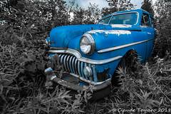 Desoto 01 (Claude Tomaro) Tags: red blackandwhite desoto junk yard junkyard classic blue boneyard selective color ontario canada claude tomaro