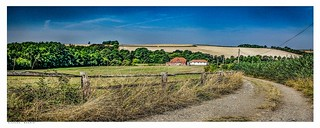 The track to Lullingstone, Eynsford, Kent.