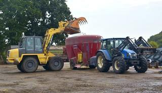 Idyllische, ländliche Szene - Futter mischen mit Ahlmann Schwenklader, Siloking (Mayer Maschinenbau) und New Holland Traktor; Wohlde, Stapelholm (3)