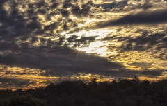 Show me where to look... (Southern Darlin') Tags: sky sun clouds rays trees sunset moutain photo photography nature naturephotography shine
