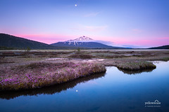 Mt. Bachelor and the Cascade Lakes (nybblr) Tags: oregon pnw pacificnorthwest mountain snow peak lake marsh stream alpenglow dusk sunset twilight grass pink moon breathtakinglandscapes bend nationalforest longexposure fog spring travel usa